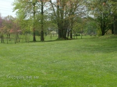 Cane Creek Park, Main course, Hole 2 Tee pad