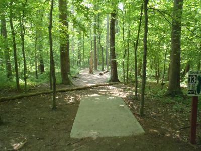 Cane Creek Park, Main course, Hole 13 Tee pad