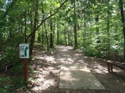 Cane Creek Park, Main course, Hole 12 Tee pad