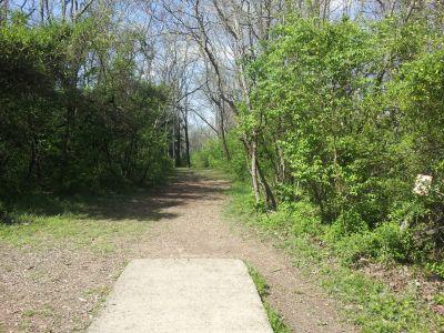 Triple Creek Park, Main course, Hole 8 Tee pad