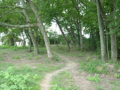 Sanders Ferry Park, Main course, Hole 7 Long approach
