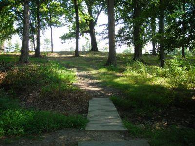 Borden Park, Main course, Hole 14 Tee pad