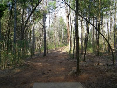 Warriors Path State Park, Main course, Hole 11 Tee pad