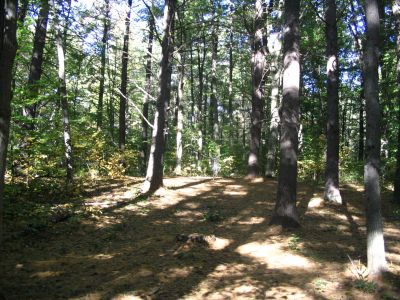 Kenwood Heritage Park, Main course, Hole 4 Midrange approach
