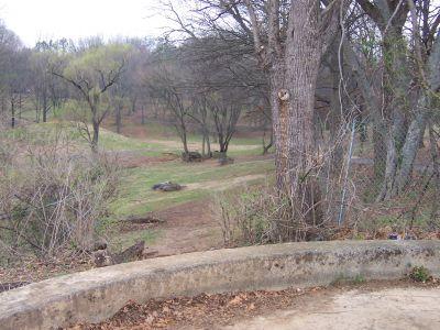 Morningside Park, Main course, Hole 14 Tee pad