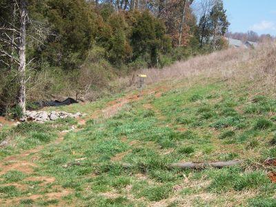 Victor Ashe Park, Main course, Hole 16 Midrange approach