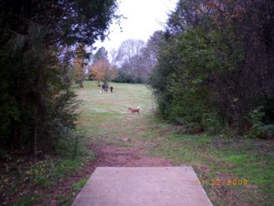 Victor Ashe Park, Main course, Hole 9 Tee pad