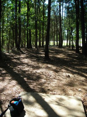 Morristown Kiwanis DGC, Main course, Hole 14 Tee pad