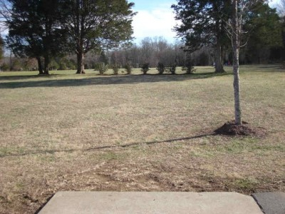 Barfield Crescent Park, Main course, Hole 10 Tee pad