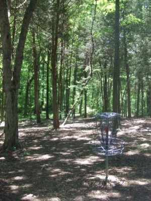 Cedar Hill Park, Main course, Hole 3 Reverse (back up the fairway)