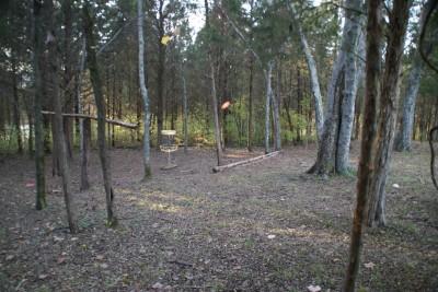 Cedar Hill Park, Main course, Hole 16 Short approach