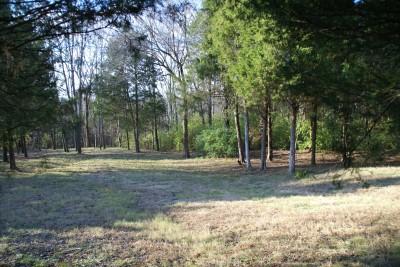 Cedar Hill Park, Main course, Hole 6 Long approach