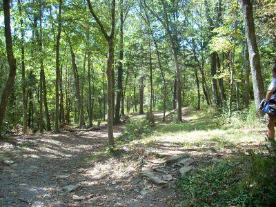 Seven Oaks, Main course, Hole 5 Long approach