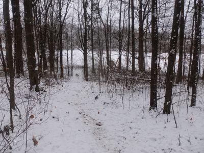 Cascade Township Park, Main course, Hole 15 Midrange approach