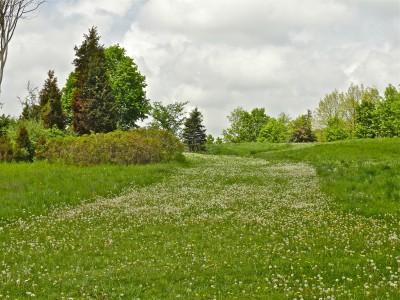Cascade Township Park, Main course, Hole 4 Tee pad