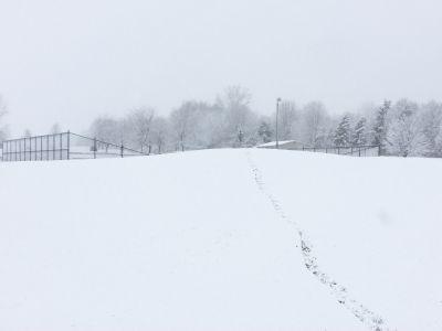 Cascade Township Park, Main course, Hole 3 Midrange approach