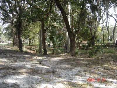 Cliff Stephens Park, Main course, Hole 6 Putt