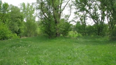Lincoln Park, Main course, Hole 17 Tee pad