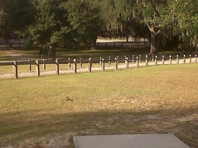 Floral Park, Main course, Hole 7 Short tee pad
