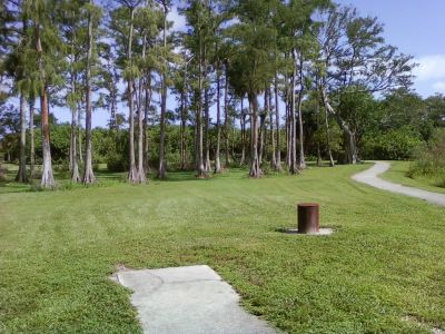 Tradewinds Park, Main course, Hole 14 Tee pad