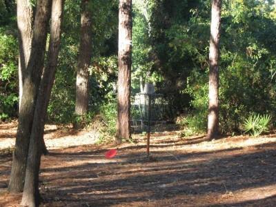 Ed Austin Park, Main course, Hole 3 Putt