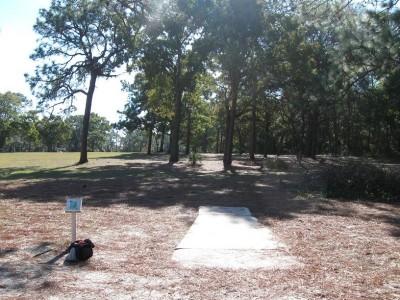 Ed Austin Park, Main course, Hole 11 Short tee pad