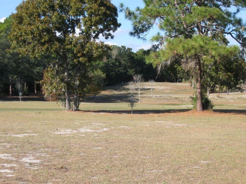 Hole 18 Ed Austin Park Jacksonville Fl Disc Golf