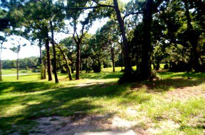 Ed Austin Park, Main course, Hole 2 Tee pad