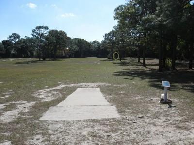 Ed Austin Park, Main course, Hole 12 Short tee pad