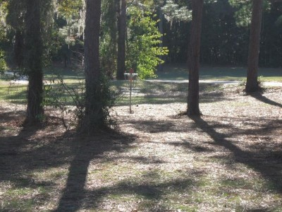Ed Austin Park, Main course, Hole 2 Short approach