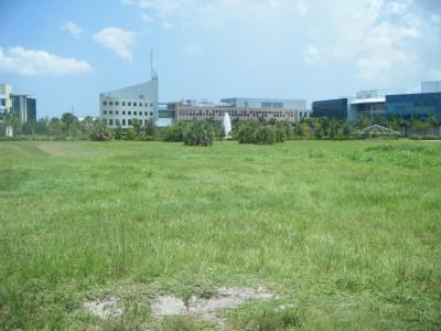 FAU - MacArthur Campus, Main course, Hole 8 Tee pad