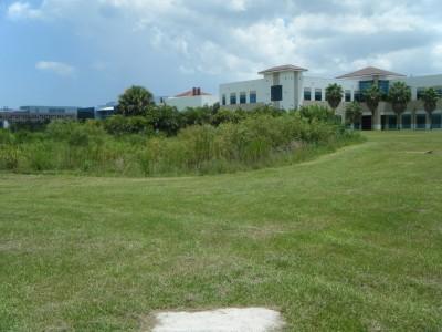 FAU - MacArthur Campus, Main course, Hole 7 Tee pad
