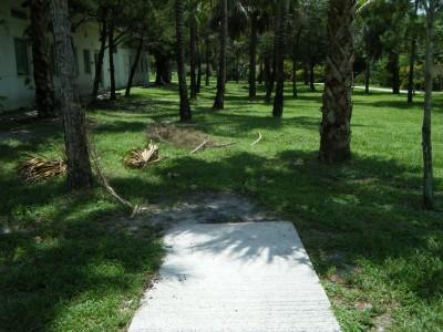 FAU - MacArthur Campus, Main course, Hole 2 Tee pad