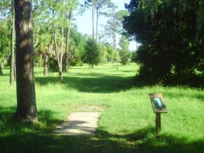 Taylor Park, Main course, Hole 7 Tee pad