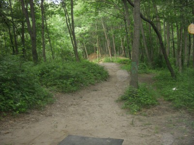 Goldenrod Disc Golf Course, Main course, Hole 16 Tee pad