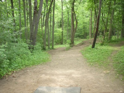 Goldenrod Disc Golf Course, Main course, Hole 10 Tee pad