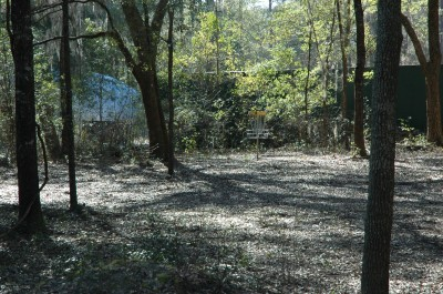 Spirit of the Suwannee, Magnolia, Hole 12 Short approach