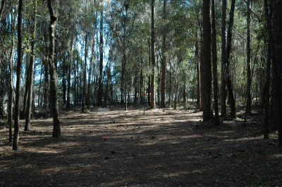 Spirit of the Suwannee, Magnolia, Hole 4 Midrange approach