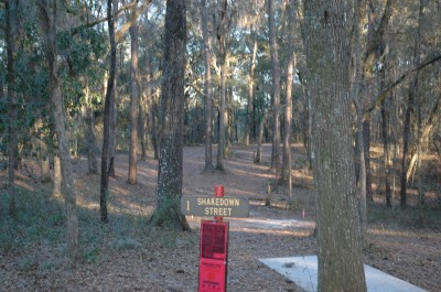 Spirit of the Suwannee, Magnolia, Hole 1 Tee pad