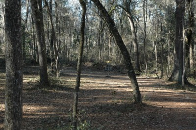Spirit of the Suwannee, Magnolia, Hole 16 Midrange approach