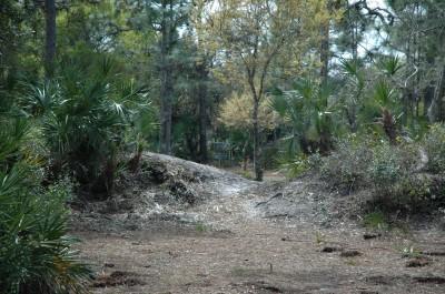 Malabar DGC, Main course, Hole 5 Long approach