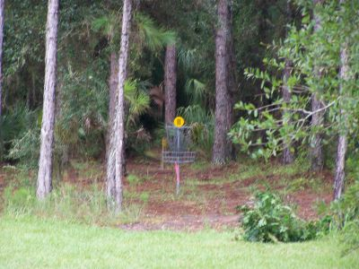 North Charlotte Regional Park, Main course, Hole 11 Midrange approach