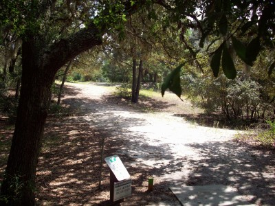 Ocala Greenway, Main course, Hole 8 Tee pad