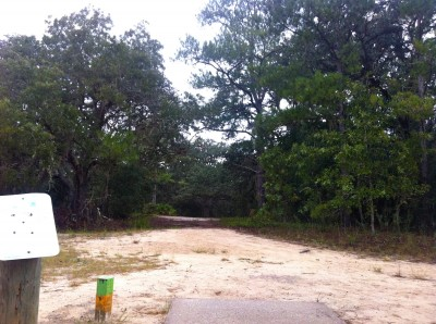 Ocala Greenway, Main course, Hole 7 Long tee pad