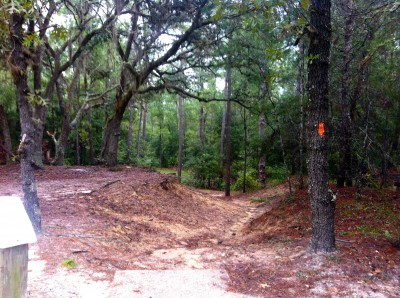 Ocala Greenway, Main course, Hole 12 Long tee pad
