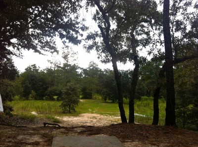 Ocala Greenway, Main course, Hole 15 Long tee pad