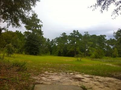 Ocala Greenway, Main course, Hole 16 Long tee pad