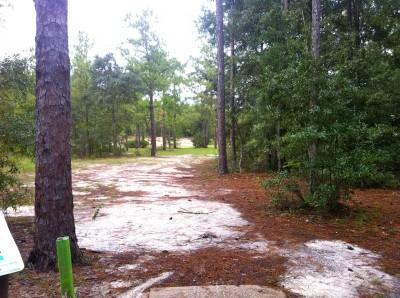 Ocala Greenway, Main course, Hole 14 Long tee pad