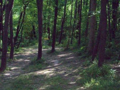 Valley Farm Park, Main course, Hole 4 Midrange approach
