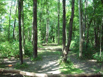 Valley Farm Park, Main course, Hole 2 Midrange approach